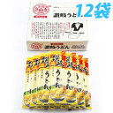 さぬきシセイ 讃岐うどん 化粧箱(200g×12袋)
