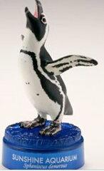海洋堂 サンシャイン限定 フィギュア ケープペンギン