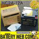 送料無料 在庫アリ日本製 国産 HC24-12A 日立 日立化成 ( 新神戸電機 ) 小型制御弁式鉛蓄電池 HCシリーズ バッテリー UPS 無停電電源 …