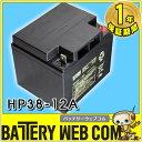 日本製 国産 HP38-12A 日立 日立化成 ( 新神戸電機 ) 小型制御弁式鉛蓄電池 バッテリー エレベーター UPS 無停電電源 防災 防犯システ…