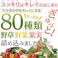 80種類の野草・野菜・果実を詰め込みました