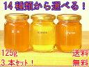 【世界のはちみつ専門店アメリア】送料無料!選りどり蜂蜜125g×3個でハチミツ天国お試しセット【smtb-k】【kb】売れ筋※包装不可商品です