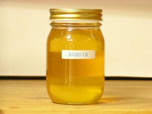 紅茶に相性抜群!国産特撰レベルと比較遜色なしアカシアはちみつ500g入り蜂蜜 はちみつ ハチミツ 瓶詰 非加熱 ハニー