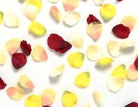 フラワーボンブのカラー花びら