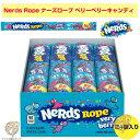 ナーズロープキャンディ 24個 Nerds Rope, Ve
