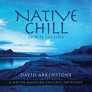 要點5倍的(2/17 10:00-2/20 9:59)[郵件班次郵費免費]David/Native Chill: Spirits Calling A Native American(進口盤CD)