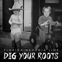 【メール便送料無料】FloridaGeorgiaLine/DigYourRoots(輸入盤CD)【K2016/8/26発売】(フロリダ・ジョージア・ライン)