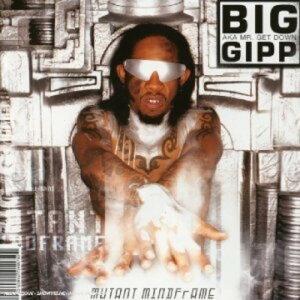 【輸入盤CD】【ネコポス送料無料】Big Gipp / Mutant Mindframe【K2017/5/26発売】