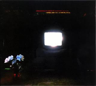 【メール便送料無料】エメラルズ / ダズ・イット・ルック・ライク・アイム・ヒア?[CD]