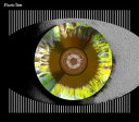 【国内盤CD】【ネコポス送料無料】Plastic Tree / 瞳孔 [CD+DVD][2枚組][初回出荷限定盤B]