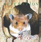 【メール便送料無料】YBO2 / ALIENNATION[CD]