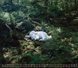 【メール便送料無料】藤原ヒロシ / slumbers(Deluxe Edition)[CD][初回出荷限定盤]【J2017/11/29発売】