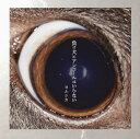 【メール便送料無料】ヨルシカ / 負け犬にアンコールはいらない[CD]【J2018/5/9発売】