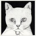 【メール便送料無料】テンテンコ / ALL YOU NEED IS CAT〜猫こそはすべて[CD]【J2018/12/5発売】