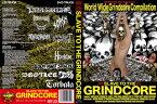 【国内盤DVD】【ネコポス送料無料】SLAVE TO THE GRINDCORE スレイヴ・トゥ・ザ・グラインドコア