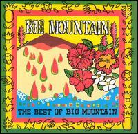 【Aポイント+メール便送料無料】ビッグ・マウンテン Big Mountain / Best Of (輸入盤CD)【YDKG...