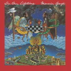 【輸入盤LPレコード】Marvin Gaye / In Our Lifetime (180gram Vinyl)(マーウ゛ィン・ゲイ)