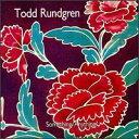 【輸入盤CD】【ネコポス送料無料】Todd Rundgren / Something/Anything? (トッド・ラングレン) - あめりかん・ぱい