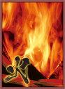 ブロッコリーハイブリッドスリーブ 「風林火山 -火-」改 パック[ブロッコリー]《在庫切れ》