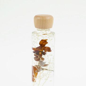 ウッドキャップ メープルL丸4コ入 <ハーバリウム・植物標本・プリザーブドフラワー・ドライフラワー>