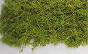 【amifa】【送料無料】作品の幅が広がる!アレンジ花材山ゴケ・小袋・グリーン(61170−700) ...