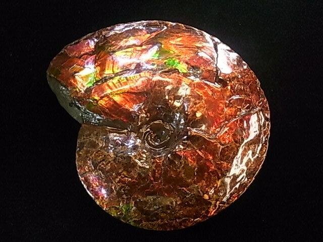 アンモライト原石標本