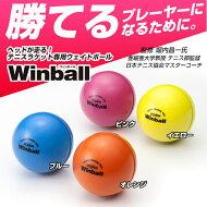 【筋力アップ】テニス素振り専用ウエイトボールウチダウィンボールWinball(WI-120)【2017年3月登録】