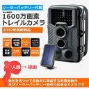 トレイルカメラ ソーラー 工事不要 家庭用 太陽電池式 防犯カメラ ワイヤレス sdカード録画 家庭用 1600万画素 高画質 AV-TR8MP-sl 2