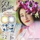 カラコン 1ヶ月 度あり 度なし SEA BLINK シーブリンク (...