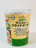 【輸入FOOD】クリスピーフライドオニオン Fried Onion 内容量・150g 原産国・オランダ