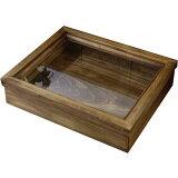 アクセサリーケース アンティークブラウン w31d25h7cm つまみなし 木製 ひのき オーダーメイド