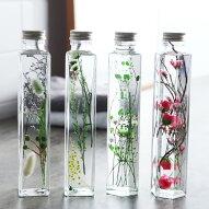 ハーバリウム 植物標本 Healing Bottle