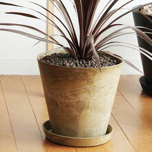 ART STONE M プランター&ソーサー 直径26.5cm/植木鉢