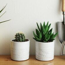 プランター トゥオミ 直径11.5cm/植木鉢