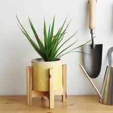 ウッドスタンド ミドル/ポットスタンド 植木鉢スタンド