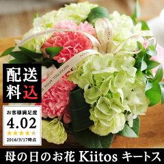 【今だけの早期特典♪100文字メッセージ】 母の日お花 Kiitos キートス [花 花鉢 鉢…