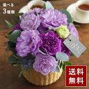 2021 母の日のお花 gracias グラシアス ギフト アレンジメント 花束 鉢植え【送料無料】