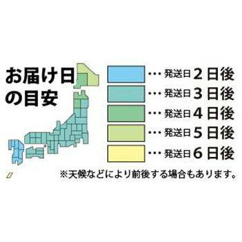 スマホケースバレンタインアイフォン7ケースiPhone7ケースiPhone7PlusケースiPhoneSEケースiphone6sケースiphone6ケースiPhone5siPhone5XperiaXperformanceXZSO-01J釣り魚ルアー珍しいリグポッパー迷彩【迷彩柄アーミーカラー2】