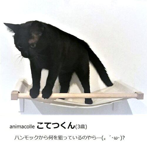 animacolleキャットハンモック(N)<正規店ハンモックキャットタワー日本製おしゃれ省スペース猫おもちゃ運動壁棚DIY白リラックスアニマコレ>