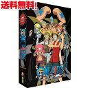 ワンピース アニメ パート2 DVD-BOX A4版コレクターズエディション (