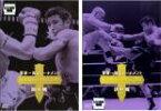 2パック【中古】DVD▼K-1 WORLD MAX 2005 世界一決定トーナメント(2枚セット)開幕戦、決勝戦▽レンタル落ち 全2巻