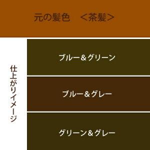 青系3色セットカラーチャート茶髪用