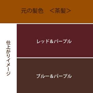 紫系3色セットカラーチャート茶髪用