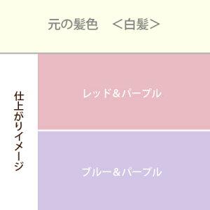 紫系3色セットカラーチャート白髪用