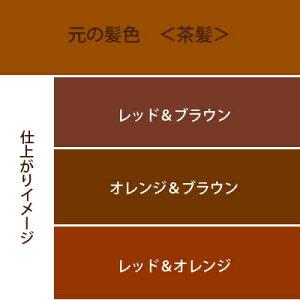 赤系3色セットカラーチャート茶髪用