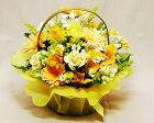 季節のお花バラガーベラの黄アレンジ