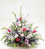 【送料無料】【お見舞いのお花】優しいピンクのバラとラン【あす楽対応】【品質保証★花】【即日発送flower】【楽ギフ_包装】