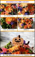【送料無料】ハロウィン 届いたら置くだけ!不思議なワンダーブーケ プレゼント 送料無料 誕生日御祝 お祝い デコレーション ハロウィン ギフト 贈り物