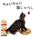 【 ちょいちょい猫じゃらし 】 knookist 猫おもちゃ ネコ ねこ 遊び プレゼント ギフトラッピング不可
