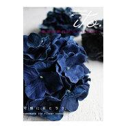 新鮮なものを求めて。『2色の花びら、デニムの紫陽花で生き生きと。』合わないものはないから。デニム紫陽花コサージュ##